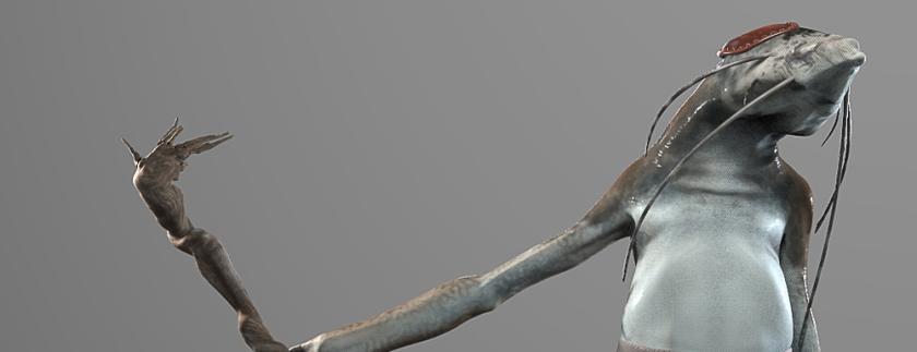 thumbraagbird