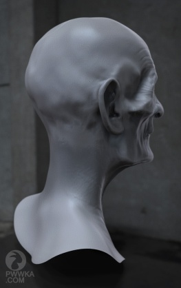 Old Man Head6