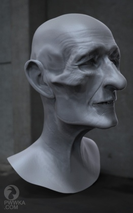 Old Man Head7